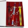 Preorder ชุดดาบสะสม Sword art online