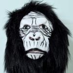 ตระกูลลิง 01 สำเนา สำเนา