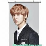 Poster exo ivy club 【HB230】