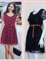 **สินค้าหมด dress2815 ชุดเดรสแฟชั่นไซส์ใหญ่แขนสั้น ผ้ายืดซีทรูลายแมลงปอมีซับในสีดำ (ไม่รวมเข็มขัด)