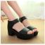 รองเท้าสำหรับผู้หญิง สวมใส่ 35 36 37 38 39 40 thumbnail 1