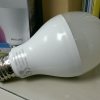 Philips LED-10.5W CoolDaylight (Clearance)