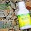 น้ำยาบ้วนปาก แบมบู Bamboo Mouthwash 1 ขวด 300 ml. thumbnail 1