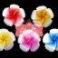 เทียนหอมลอยน้ำดอกชบา แพ็คถุงแก้ว ผูกเชือกพร้อมใบไม้ thumbnail 2