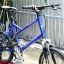 จักรยานมินิเสือภูเขา Progressive ล้อ20นิ้ว 8เกียร์ thumbnail 2