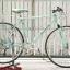 จักรยานทัวร์ริ่งโครโมลี่ Bianchi Project 3 ไซส์ M thumbnail 1