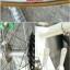 เสือหมอบโครโมลี่สับถัง Katakura Silk ไซส์ S thumbnail 6
