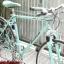 จักรยานทัวร์ริ่งโครโมลี่ Bianchi Project 3 ไซส์ M thumbnail 4