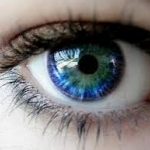 ผลิตภัณฑ์สำหรับดวงตา