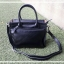 กระเป๋าสะพาย รุ่น Iris สีดำ (No.129) thumbnail 1