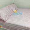 ผ้าปูที่นอนรัดมุม 3.5 ฟุต ลายริ้ว สีชมพูอ่อน