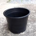 กระถางพลาสติกดำ ขนาด 5 นิ้ว จำนวน 10ใบ