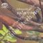 หนังสือ บันทึกของแผ่นดิน ๔ สมุนไพรยากำลัง อภัยภูเบศร thumbnail 1