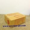 กล่องไปรษณีย์ฝาชนสีน้ำตาล No.AA (13x17x7 cm.)
