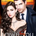มาเฟียร้อน ชุด The Dark of Mafia กัณฑ์กนิษฐ์ ไลต์ ออฟ เลิฟ Light of Love Books
