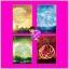 ชุด Charming Creatures 4 เล่ม :1.กรงกฤษณา 2.ใจภักดิ์นิรันดร์ 3.พันธนาน้ำผึ้ง 4.อสุราร่ายรัก ฉัตรฉาย พราวพิรุณ Andra ฌามิวอาห์ แจ่มใส LOVE thumbnail 1