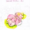 Secret รักลับ..ลับ (มือสอง) ชุด Ugly Duckling วีสาม แจ่มใส