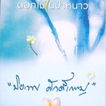ดอกไม้ในป่าหนาว(มือสอง) ปิยะพร ศักดิ์เกษม อรุณ ในเครือ อมรินทร์