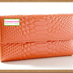 กระเป๋าสตางค์สีส้ม Bag149