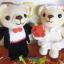 ตุ๊กตาคู่แต่งงาน 6- 7 นิ้ว thumbnail 1
