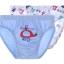 กางเกงชั้นในเด็ก Danrol's [แพคคู่] thumbnail 24