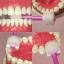 MDB แปรงสีฟันเด็ก 360 องศา Step 2 รุ่น Training [1ปีขึ้นไป] thumbnail 5