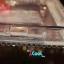 เคส OPPO R1 - Jewely Hard Case [Pre-Order] thumbnail 43